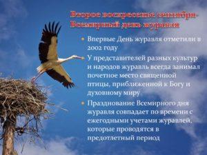 Во второе воскресенье сентября отмечается Всемирный день журавля