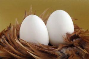 ирный день яйца